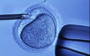 IVF firmly established in mainstream of medicine and society